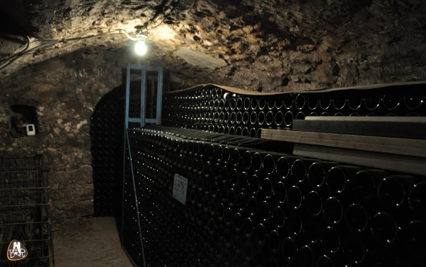 Cave des champagnes Houssart