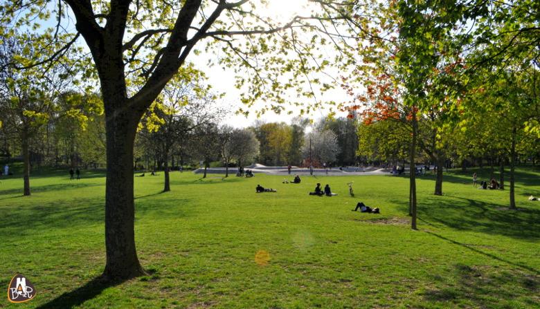 Le parc Léo Lagrange plébiscité par les rémois