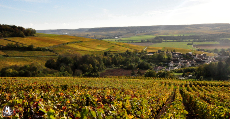 Le village de Vandières sous des couleurs automnales