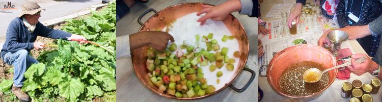 Préparation d'une confiture de rhubarbe