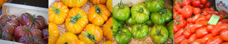 Tomates - Ladam Primeurs