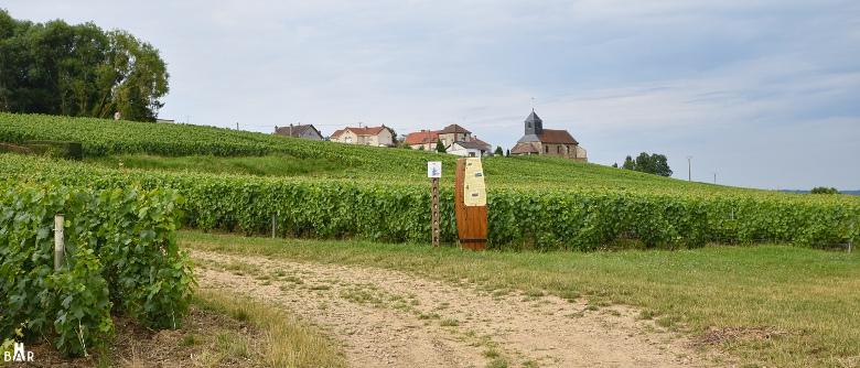sentier-vigneron-mutigny-9