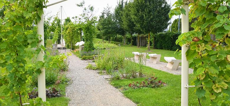 jardin-de-vignes-chouilly-3
