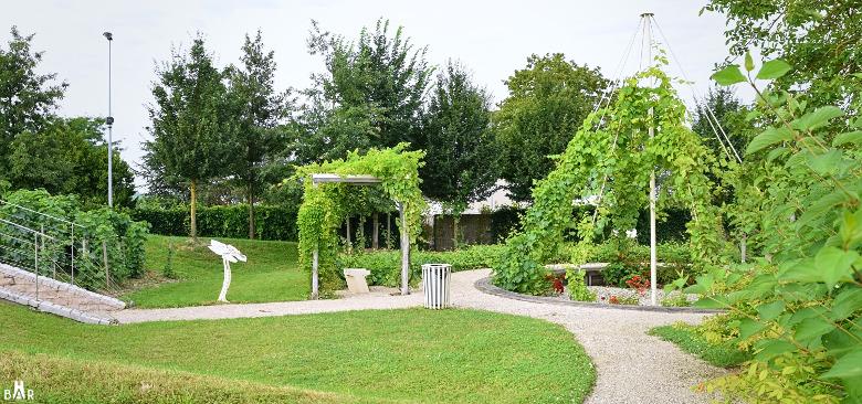 jardin-de-vignes-chouilly-9